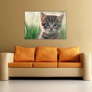 """Πίνακας σε καμβά Ορθογώνιος """"Γατάκι"""""""