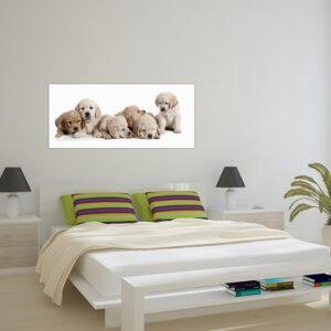 """Πίνακας σε καμβά Πανοραμικός """"Κουτάβια - Puppies"""""""